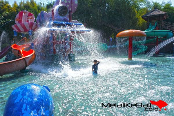 Water Park Bali Safari